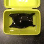sciences participatives Nausicaa capsules oeufs de raie Apecs CapOeRa